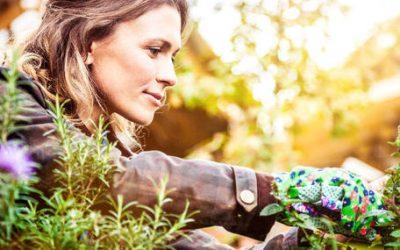 Les medias en parlent : L'Hortithérapie, ou quand le jardinage soigne