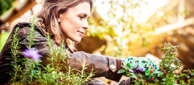 Hortithérapie ou Garden Thérapie, le magazine «Psychologies» s'intéresse aux bienfaits du Jardinage.