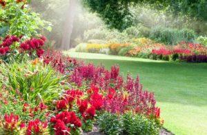 France Inter nous parle de «Ces Jardins qui nous font du bien…»