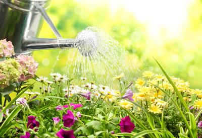 Les français ont bien compris les bienfaits du jardinage sur leur santé physique et psychologique