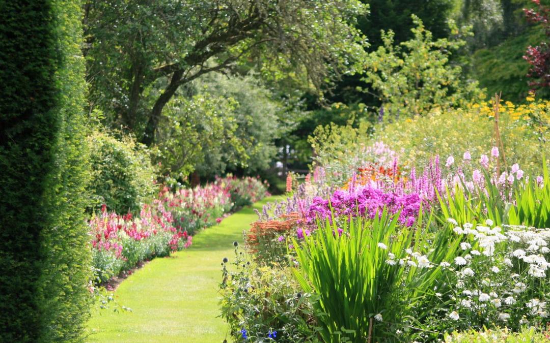 «La Sagesse du Jardinier» : une réflexion philosophique