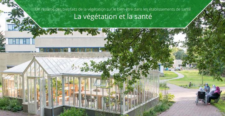 Une université Hollandaise résume les interactions vertueuses entre la végétation et la santé